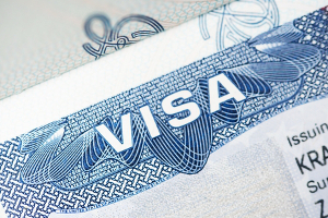 companies that sponsor h1b visas most consistently