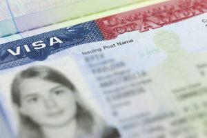 h1b visa holder